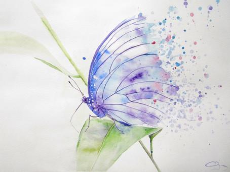 """Atelier """"Natur'Ailes"""""""