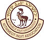 KIA New Logo.jpg