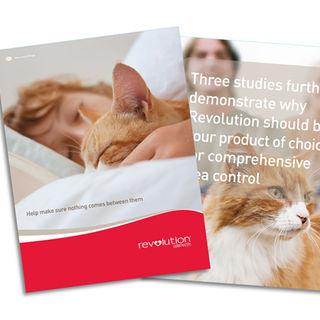 Brochure Systems.jpg