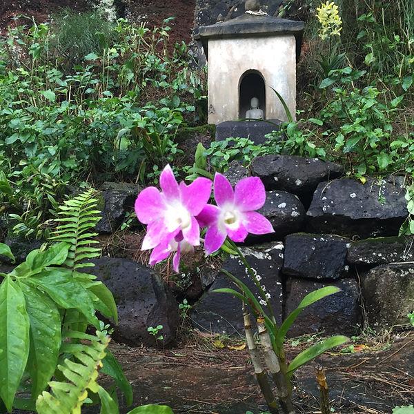 orchid & shrine.jpg