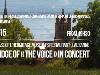 Annual fundraising event in Lausanne