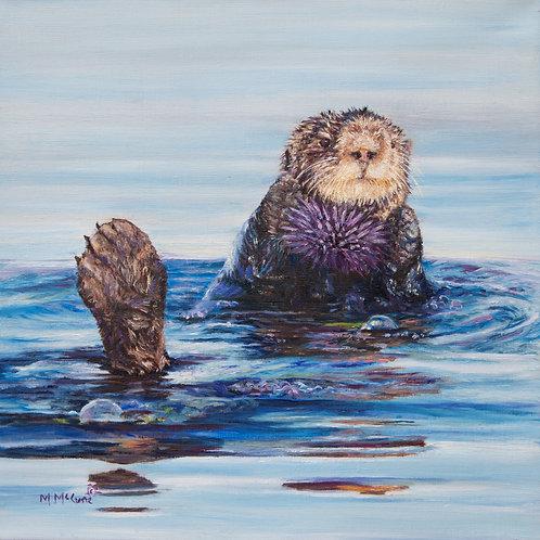 Save the Kelp!