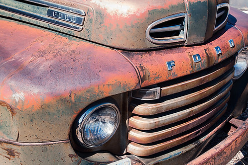 Harlequin Ford
