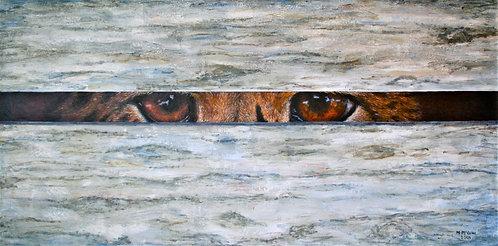 Eyes of Progress