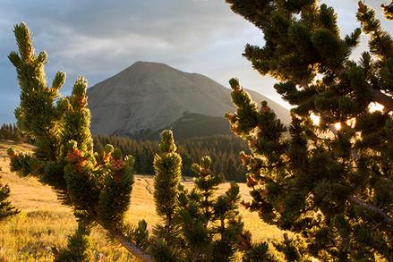 West Spanish Peak at Sunrise