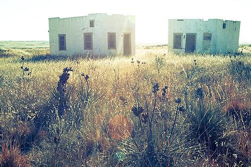 Farmworker Housing