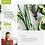 Thumbnail: Template #: wix-dietitian