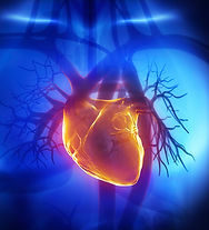 MKG00218-Heart-Valve-Clinic-Provider-Ref