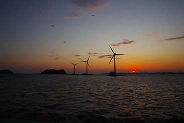 wind plant.jpg