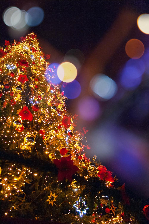 julegudstjeneste nykøbing falster