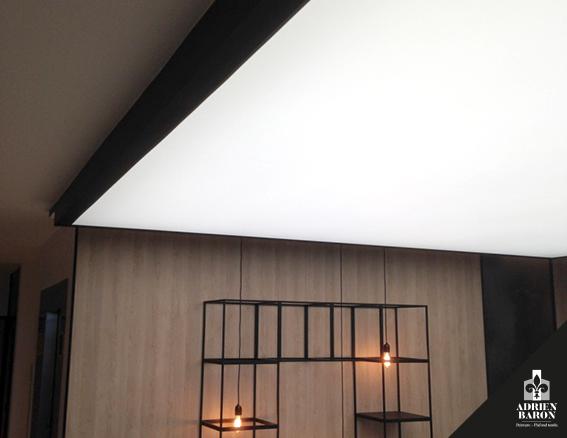 Plafond tendu 8