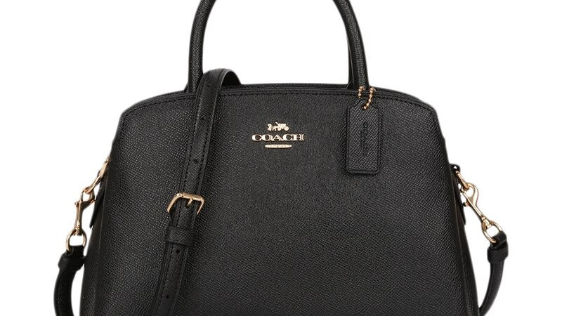 Coach Mini Lillie Carryall Women's Handbag