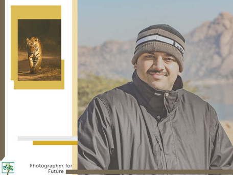 Nimit Virdi: Walking with Tigers