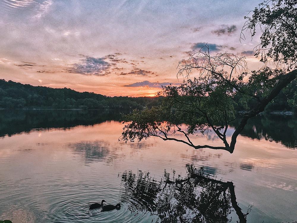 Sunset on a lake, Boston