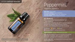 wa-peppermint