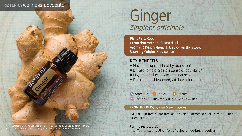 wa-ginger