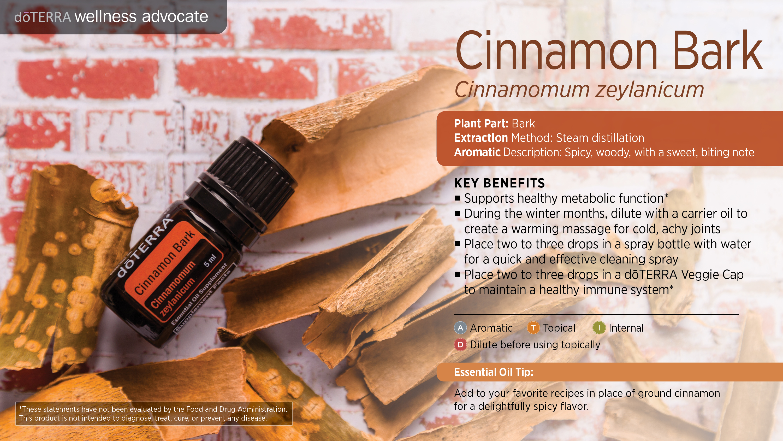 wa-cinnamon-bark