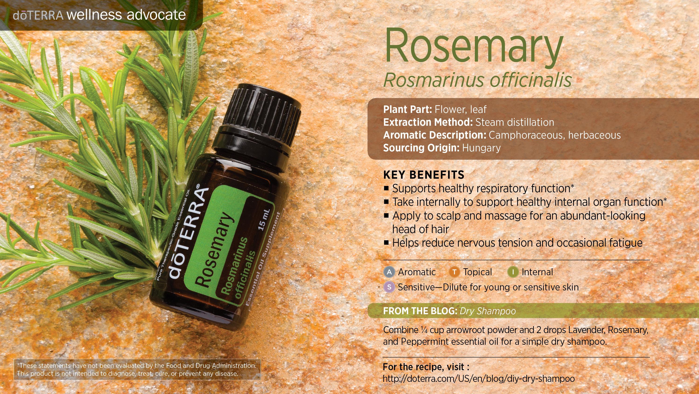 wa-rosemary