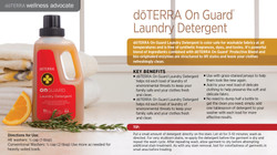 wa-on-guard-laundry-detergent