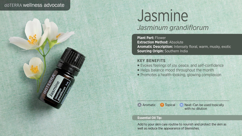 wa-jasmine