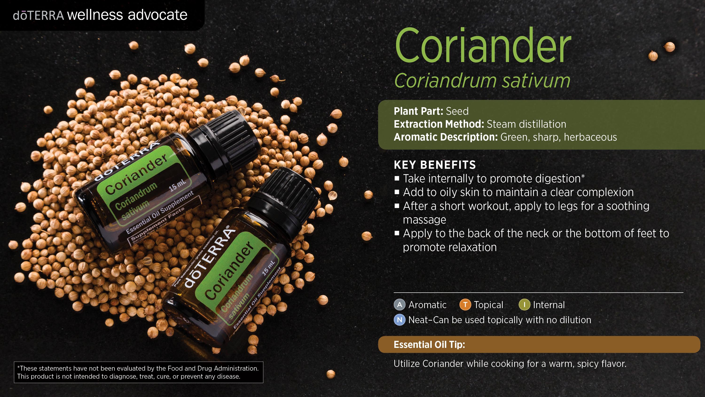 wa-coriander