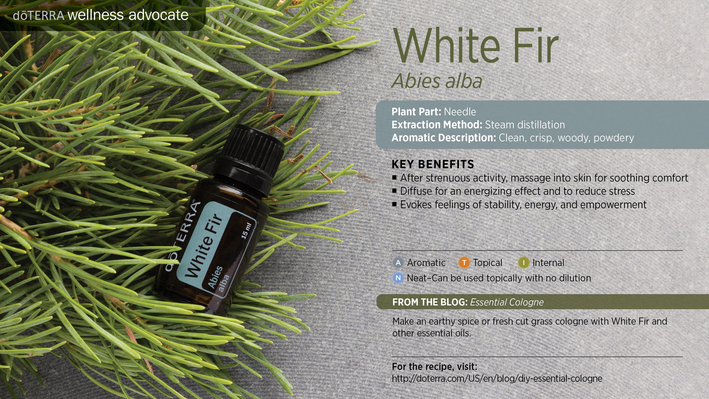 wa-white-fir