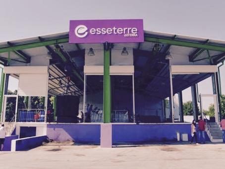 Lavender Shortage and Skyrocketing Prices!