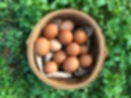Local_Eggs_edited.jpg