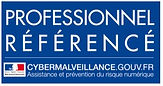 LOGO-PROFESSIONNEL-REFERENCE-CITICOM CYBERMALVEILLANCE
