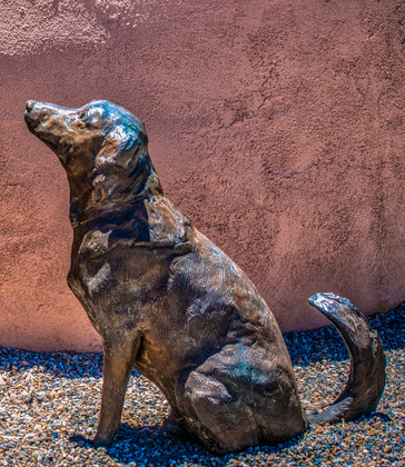The Albuquerque Museum_Julian Starks Pho