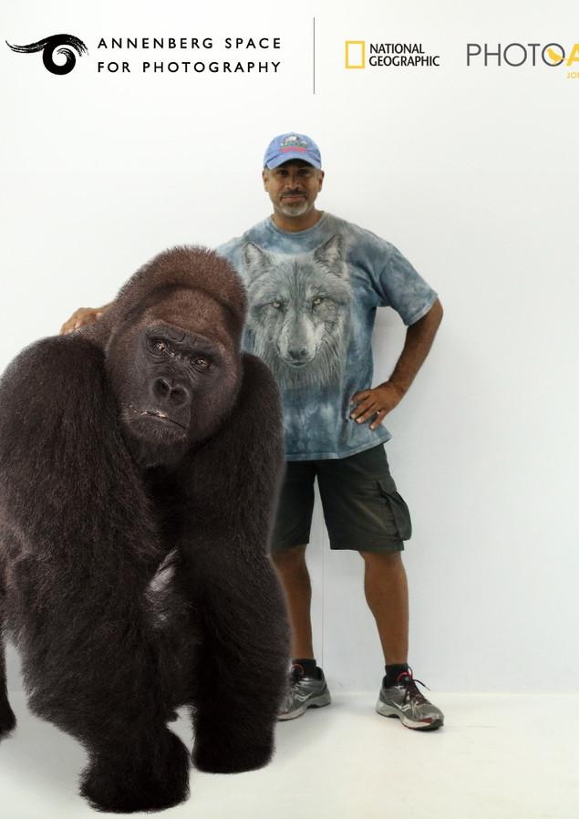 Nat Geo Gorilla Photo.jpg