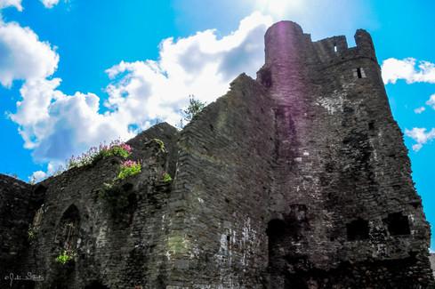 DSC_4362_Swansea_Julian Starks Photograp