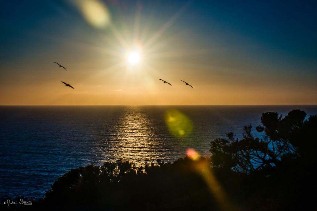 California Beaches_Julian Starks Photogr
