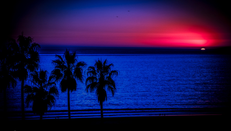 _JSC8144_February 07, 2011_Luminar-edit.