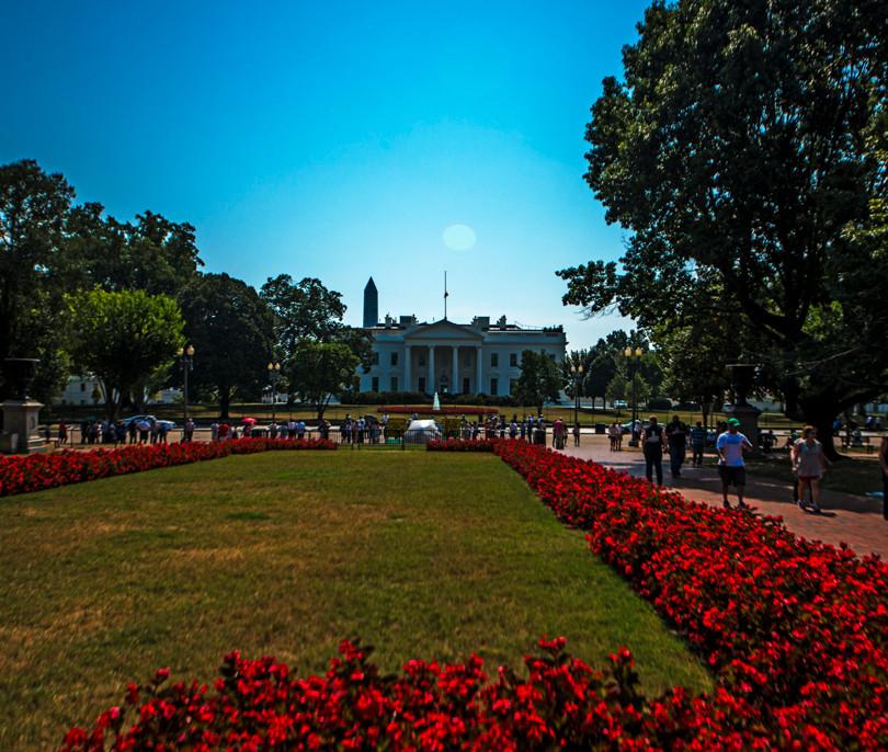 8739_Washington D. C. from NYC_Julian St