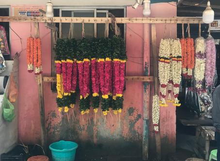 LANAMARA'S GUIDE TO INDIA