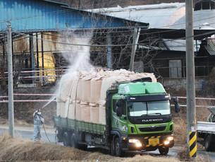 Южная Корея подтвердила случай ящура