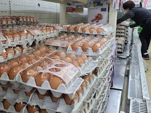 Южная Корея продлевает временную отмену импортных пошлин на яйца до конца года