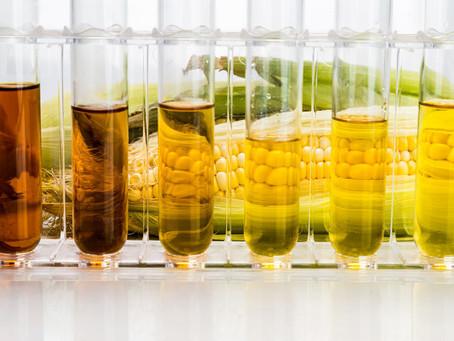 Южная Корея просит у Вьетнама справедливого расследования в отношении кукурузного сиропа