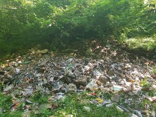 На южнокорейском острове Чеджу найдены 2 тонны мусора 30-летней давности
