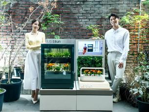 LG Electronics запускает «tiium», устройство для домашнего садоводства
