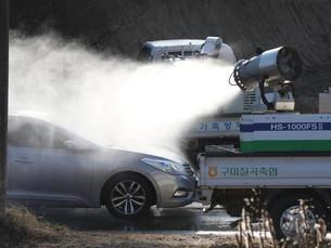 Южная Корея проверяет 10 подозреваемых случаев высокопатогенного птичьего гриппа