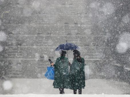 Частным университетам Южной Кореи грозит «смертный приговор»