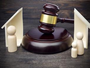 Отсутствие знания корейского языка не является основанием для лишения права опеки над ребенком: суд
