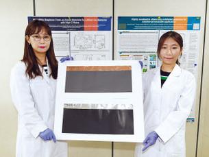 В Южной Корее разработали катодный материал, увеличивающий дальность пробега электромобили на 20%