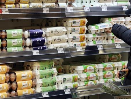 Южная Корея отменяет импортные пошлины на яичные продукты из-за дефицита предложения