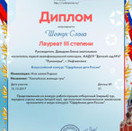 одаренные дети россии шевчук.jpg