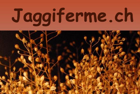 jaggiferme.ch