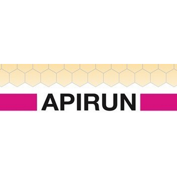 LOGO APIRUN.png