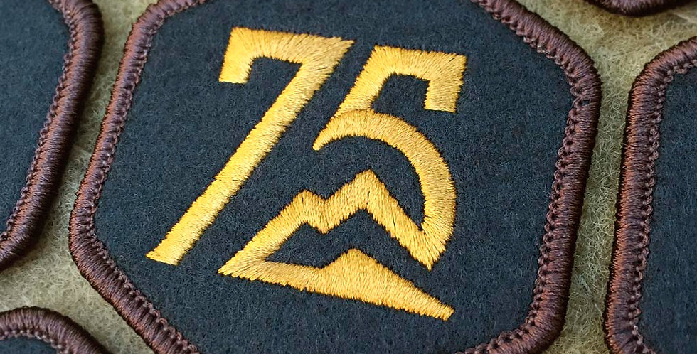 75 Icon Patch